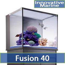 cat-fusion-40-2.jpg