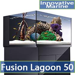 cat-fusion-50-lagoon.jpg