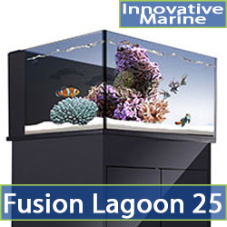 cat-lagoon-25.jpg
