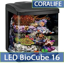 led-biocube-16.jpg