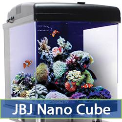 nano-cube-cat-2.jpg