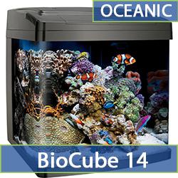 oceanic-bc14.jpg