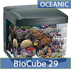 oceanic-bc29.jpg