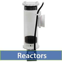 reactors-cat.jpg